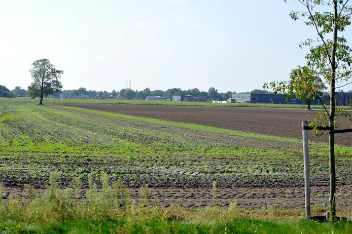 Deel van het gebied Oosterweilanden in Vriezenveen.