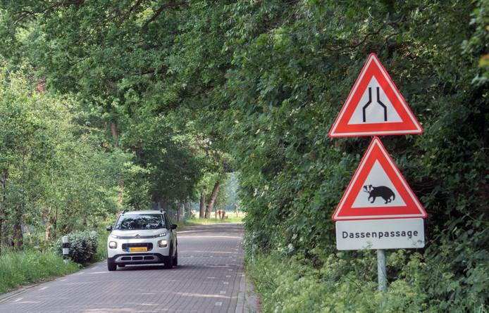 De dassenpassage moet smaller, vindt de provincie. Harderwijk is er nog niet over uit.