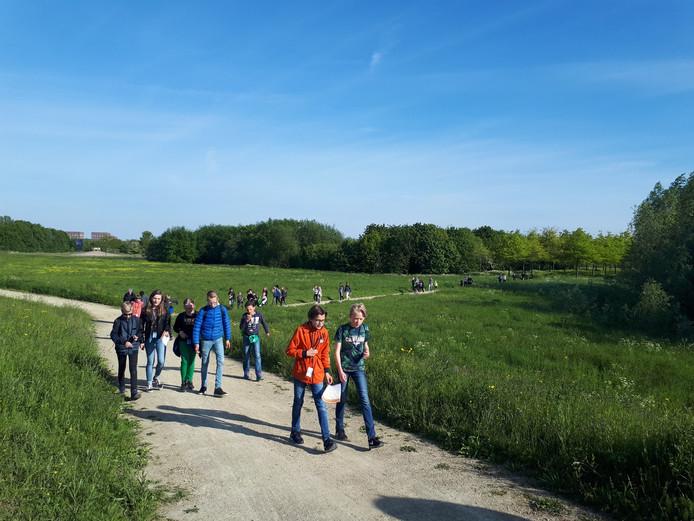Wandelaars van de 10 km richting de Bokhovense Maasdijk