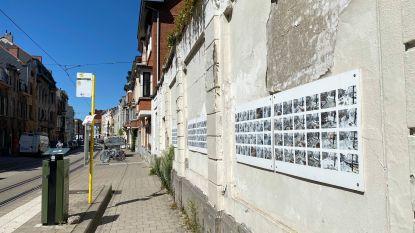 Talrijke foto's achter tramhalte herinneren aan werken rond Papegaaistraat