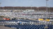 """Meer dan 100.000 nieuwe wagens in haven van Zeebrugge geraken niet tot bij eindklant: """"En we verwachten nog leveringen"""""""