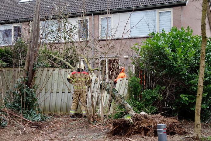 Deze schutting overleefde de klap van de boom niet tijdens de storm van zondagavond.