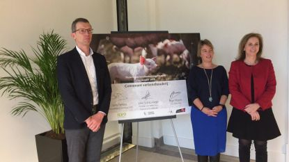Bundeling krachten voor onderzoek in de varkenshouderij Limburg