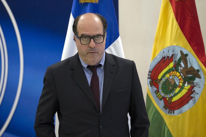Voormalig parlementsvoorzitter Julio Borges.