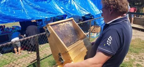 Leren over bijen op open dag bij imkervereniging St. Ambrosius in Den Bosch