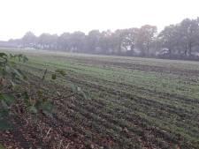 Ede zet vaart achter woningbouw in Kernhem-Noord: 'Bedoeld voor Edenaren die nu niets kunnen vinden'