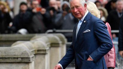 """Prins Charles zal Harry en Meghan financieel blijven steunen na de Megxit: """"Twee miljoen pond per jaar"""""""