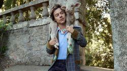 Harry Styles poseert met babydieren in een nieuwe campagne voor Gucci