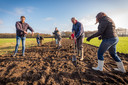 VESSEM - Aanleg landschapselementen in het buitengebied van Vessem (Stroomkesberg/Meerven/Keienhurkseweg)