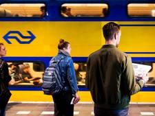 Geen treinen tussen Utrecht en Arnhem door 'onverwachte werkzaamheden'