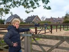 Paardenstal Oene weer vrij van rhino-virus