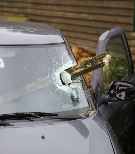 Houten balk boort zich door voorruit auto en mist bestuurder maar net