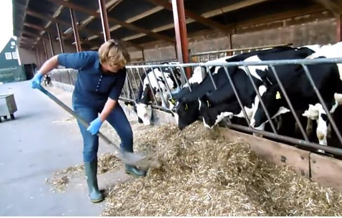 Still uit de video die boerin Ankie heeft gemaakt van het 'werkbezoek' van burgemeester Wobine Buijs.