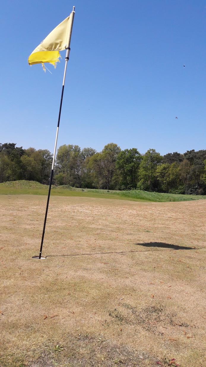 De greens op de failliete golfbaan Weleveld lijken meer op kokosmatten dan op gras.