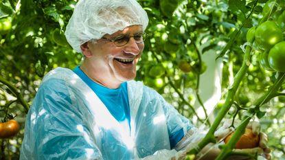 Kris Peeters werkt zich in zweet tussen tomaten