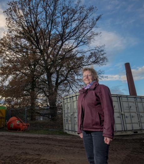 Actie tegen kap monumentale eiken Enka: 'Een boom staat in een al verkocht huis'