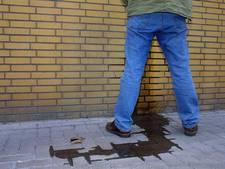 Zaltbommelse wijk geërgerd door wildplassers: 'Ga alstublieft gewoon naar huis'