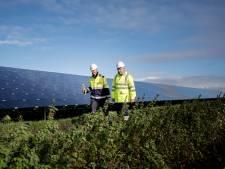 Plannen voor groot zonnepark in Dinteloord