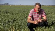 Landbouwers mogen geen water uit waterlopen pompen: boeren smachten naar regen