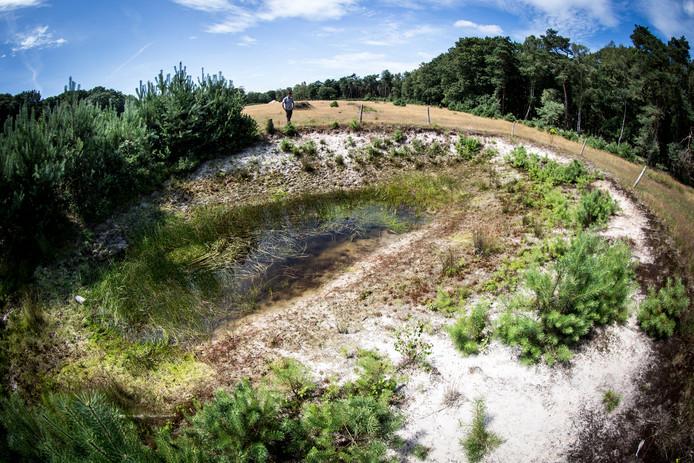 De Sallandse Heuvelrug heeft nog steeds last van de droogte van de zomer.