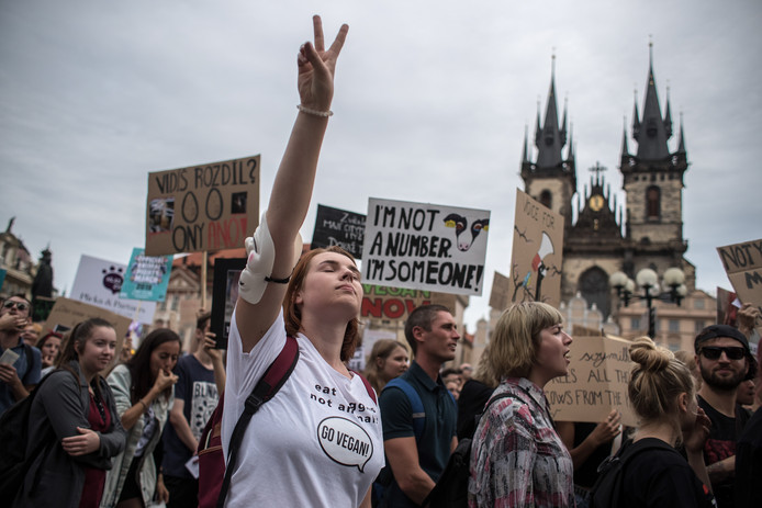 The Official Animal Rights March in Praag op 17 augustus 2019.