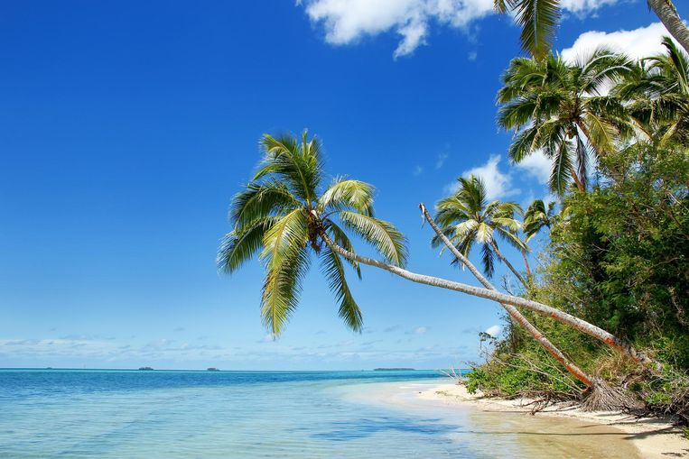 De kustlijn van eiland Makaha'a. Een van de 169 eilanden van de Tonga-archipel.