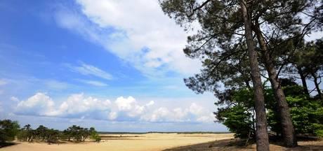 Fietsblog: Loonse en Drunense Duinen