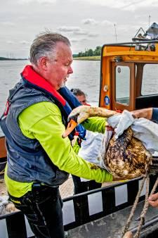 Hulpverleners met man en macht in de weer met honderden besmeurde vogels