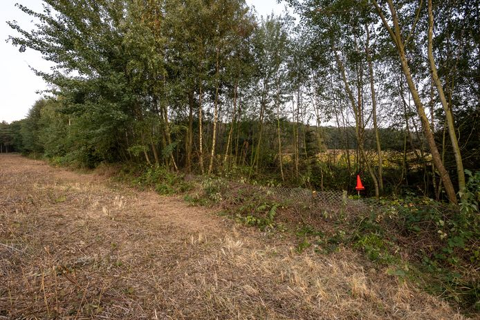 De plek waar het lichaam van Nicky Verstappen werd gevonden werd voor de schouw gemarkeerd met een pylon