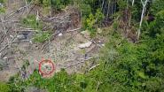Drone schiet eerste beelden van geïsoleerde indianenstam in Amazonewoud