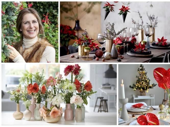 Nog ideeën nodig om je kersttafel sfeervol aan te kleden? Onze tuinexperte tipt de mooiste kerstbloeiers