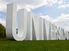 UT krijgt kunstwerk van acht meter hoog koperen hoofd voor 60-jarig bestaan