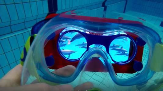 Via een waterbestendige vr-bril kun je nu ook echt een zwembad genieten van de dolfijnenfilm.