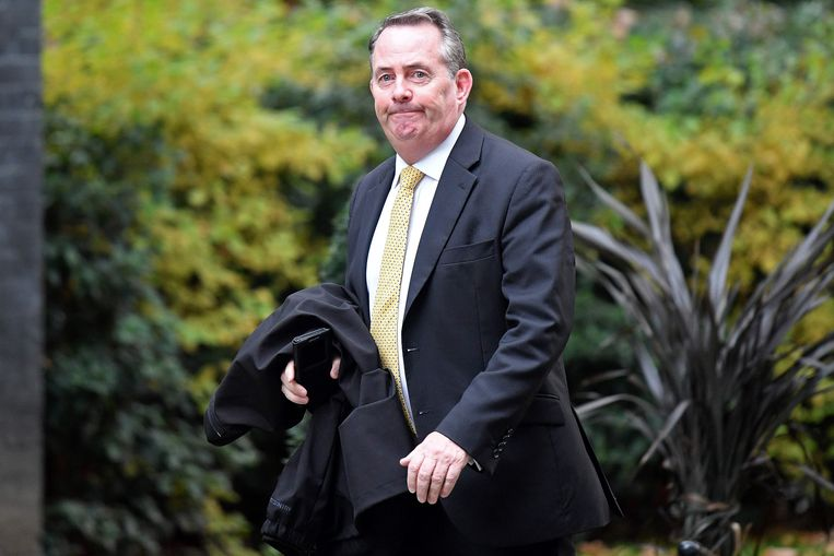 Voormalig Brits minister van Handel Liam Fox. Beeld AFP