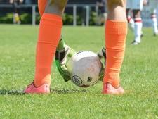 FC Oss na winst op Jong FC Utrecht verlost van acute degradatiezorgen
