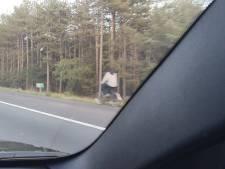 Opmerkelijk: fietser rijdt over vluchtstrook van A28