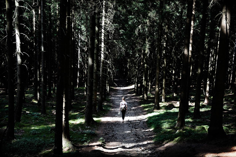 Verslaggever Sterre Lindhout wandelt door de Harz.