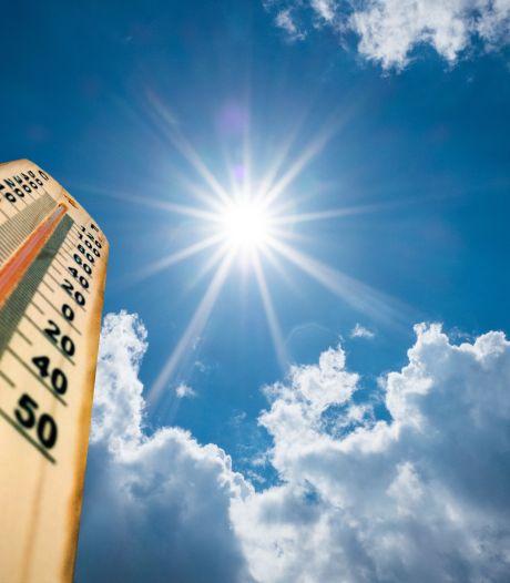 2020, année la plus chaude dans le monde à égalité avec 2016