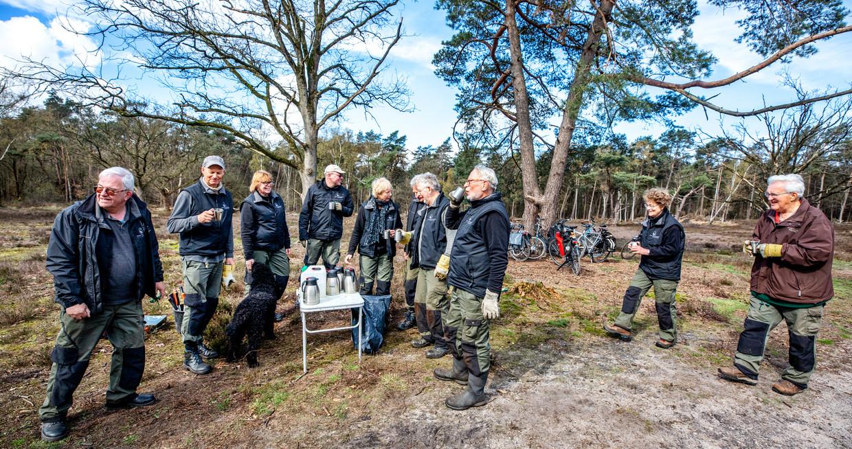 Vrijwilligers op de Hoorneboegse Heide bij Hilversum Beeld Raymond Rutting / de Volkskrant