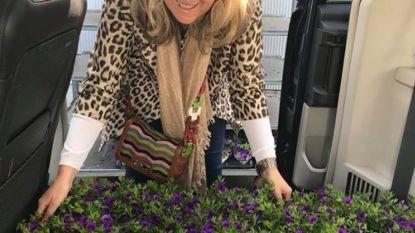 Brugge gaat voor klein geluk: recordaantal bloembollen de grond in
