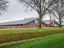 Vergunning megavarkensstal Zeeland alsnog aangescherpt: 'Omwonenden moeten dit gaan merken'