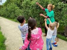 Toneeldocente Dieuwke geeft les in de natuur: 'Leren reageren op impulsen is belangrijk'