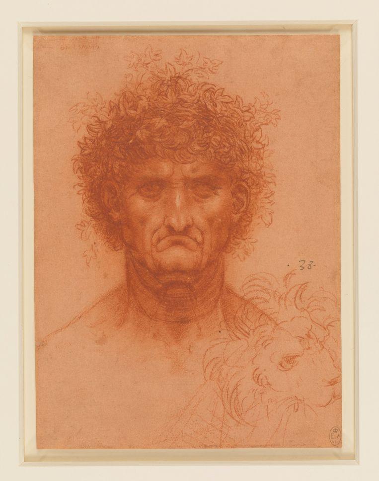 Hoofd van een man, en face, en de kop van een leeuw (ca. 1505) Je kunt je op twee manieren vermaken met deze tekening. Enerzijds is het een prachtig portret van een slechtgehumeurde, driftige man. Een type waar je een straatje voor om loopt, omdat je zeker weet dat je ruzie met hem krijgt. De leeuw weerspiegelt zijn humeur, diens manen zijn bos haar. Anderzijds is het een buitengewoon fijn getekend hoofd. Het haar krult op de wijze waar Leonardo van hield. Tussen de haren zitten fijne klimopblaadjes verscholen, onderdeel van een krans. Verbazingwekkend lieflijk voor zo'n boze man. Beeld Royal Collection Trust/© Her Majesty Queen Elizabeth II 2018