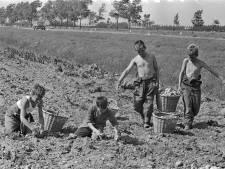 Roer moet om, maar niet alleen in landbouw