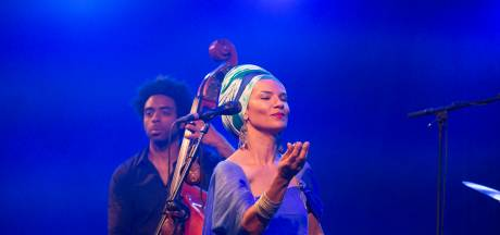Tienduizenden euro's subsidie voor noodlijdend festival Music Meeting