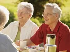 23 chalets voor senioren in Someren