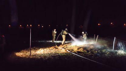 Pompiers blussen smeulende afvalbrand