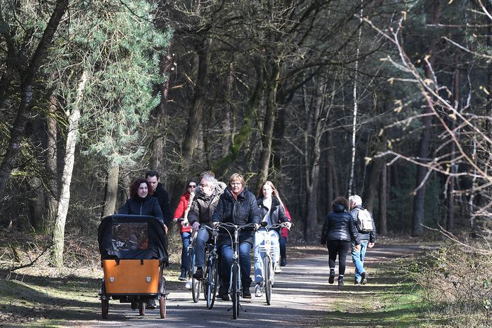 Fietsers en wandelaars in de boswachterij van Sint Anthonis.