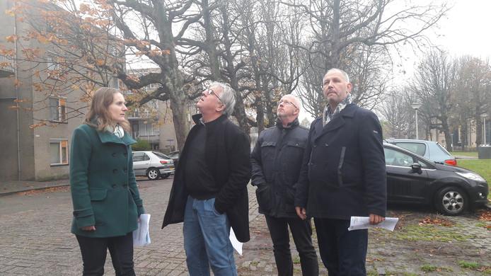 Lisanne van den Bulk en Maarten Raaijmakers van de Commissie Welstand en Monumenten (links) bekeken onlangs met twee ambtenaren de bomen aan de Rijtuigweg. Aan de zuidkant mag de gemeente vanaf maandag 27 zwakke kastanjes kappen, aan de noordzijde 10. De rest wordt nog nader onderzocht.