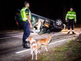 Auto over de kop in Bosch en Duin, honden blijven ongedeerd